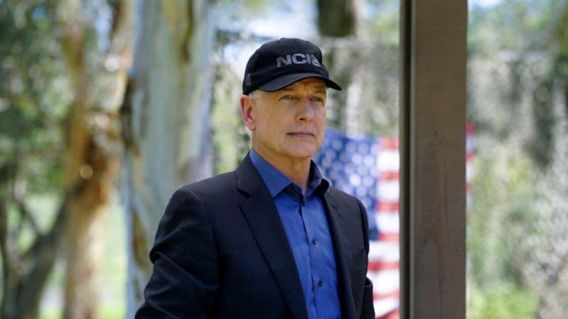 NCIS: What Mark Harmon Was Doing Before His Role In The CBS Investigative Drama