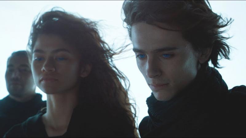 'Dune' A Dream For Villeneuve, Chalamet, Sequel Or No
